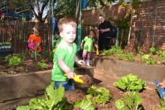 Kiddies Academy DSC_7706