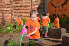 Kiddies Academy DSC_7714